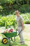 Mappy męski ogrodnictwo z wheelbarrow przy ogródem Zdjęcia Stock