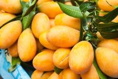 Maprang: fruta tropical Fotografía de archivo libre de regalías