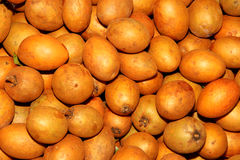 Maprang Thai fruit Stock Images