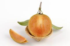 Maprang thai name, Marian Plum, Plum Mango (Bouea macrophylla Griffith). Royalty Free Stock Photos