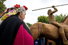 Mapuche Royalty Free Stock Images