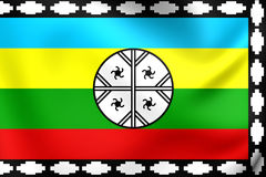 Mapuche Flag of Nagche Territory Royalty Free Stock Images