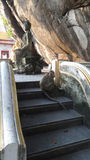 Małpuje przy antyczną świątynią na górze Zdjęcie Stock