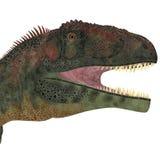 Mapusaurus Dinosaur Head Royalty Free Stock Photo