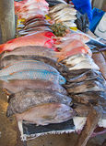 Maputo vissenmarkt Stock Afbeeldingen