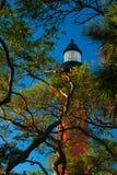 Maquereau De Leon Inlet Lighthouse et musée images stock