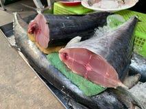 Maquereaux de roi crus frais d'Indo Pacifique coupés en morceaux, maquereaux repérés, poissons de scombre sur la poissonnerie photos libres de droits