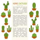 Maqueta casera de los cactus stock de ilustración