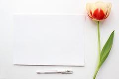Maqueta de los tulipanes Medios del social del blog de los posts Foto de archivo