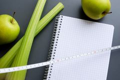 Maqueta del plan de la dieta Imagenes de archivo