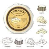 Maqueta del queso redondo con la etiqueta del camembert Ejemplo del vector con la etiqueta engomada del vintage Imagenes de archivo