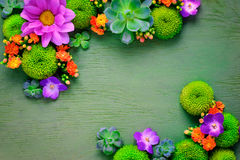 Maqueta floral de la tarjeta de felicitación Fotos de archivo libres de regalías