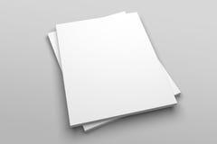 Maquette d'illustration de magazine ou de brochure 3D de lettre des USA aucune 5 Photographie stock libre de droits