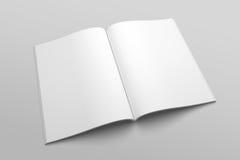 Maquette d'illustration de magazine ou de brochure 3D de lettre des USA aucune 3 Photographie stock libre de droits