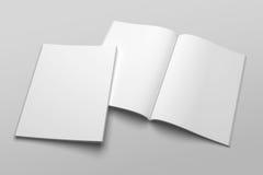 Maquette d'illustration de magazine ou de brochure 3D de lettre des USA aucune de gare Photographie stock