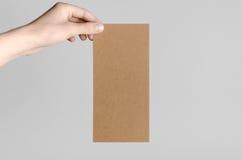 Maquette d'insecte de Papier d'emballage DL Image libre de droits