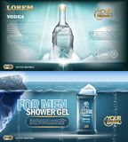 Maquette de bouteille de vodka d'argent d'aqua de vecteur de Digital Image stock