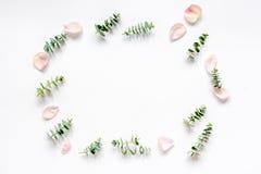Maquette florale avec des pétales de rose et eucalyptus sur la vue supérieure blanche de table Images libres de droits