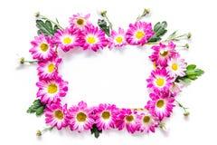 Maquette florale Feuille de papier dans le cadre des fleurs roses sur la vue supérieure de fond blanc Image stock