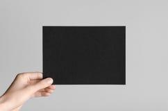 Maquette noire de l'insecte A5/invitation Images stock
