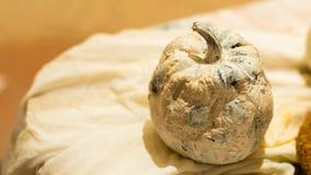 Maquette peinte blanche de potiron pour l'art photos stock