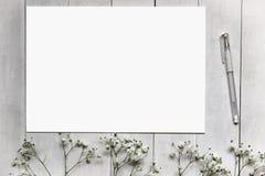 Maquette pour des présentations avec des fleurs de Gypsophila Images stock