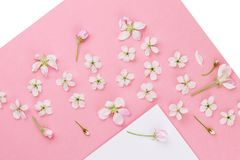 Maquette vide de cadre avec les fleurs blanches Photographie stock