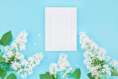 Maquette vide de cadre avec les fleurs blanches Image stock