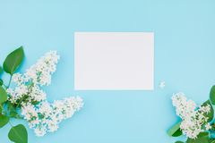 Maquette vide de cadre avec les fleurs blanches Photo stock