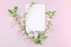 Maquette vide de cadre avec les fleurs blanches Photos stock