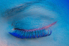 Maquillage d'oeil Photo stock