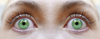 Maquillage de fille de yeux verts Photos libres de droits