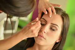 Maquillage Maquillage Fards à paupières Brosse de fard à paupières Photo libre de droits
