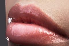 Maquillage naturel parfait de lèvre de plan rapproché Belles pleines lèvres dodues sur le visage femelle Nettoyez la peau, maquil Photo libre de droits
