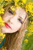 Maquillaje brillante Imagen de archivo libre de regalías