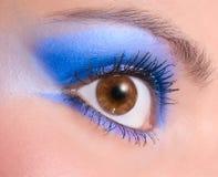Maquillaje de la belleza Imagen de archivo libre de regalías