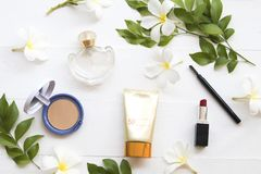 Maquillaje de la belleza de los cosméticos para la cara de la piel de la mujer colorida fotos de archivo
