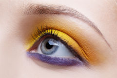 Maquillaje de la ojo-zona de la muchacha Imágenes de archivo libres de regalías