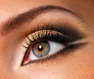 Maquillaje de oro-marrón eficaz Fotos de archivo