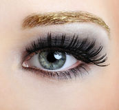 Maquillaje del estilo y de la manera Fotografía de archivo libre de regalías