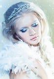 Maquillaje del invierno Fotografía de archivo