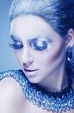 Maquillaje del invierno fotos de archivo