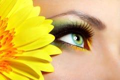 Maquillaje hermoso del ojo Foto de archivo libre de regalías