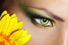 Maquillaje hermoso del ojo con la flor del gerber Foto de archivo libre de regalías