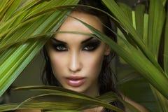 maquillaje Mujer hermosa atractiva que oculta detrás de las hojas de palma beau foto de archivo libre de regalías