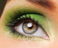 Maquillaje verde eficaz Imagen de archivo libre de regalías