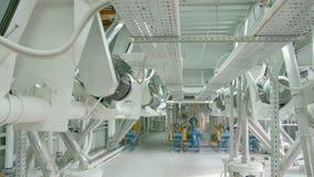 Maquinaria eléctrica del molino para la producción de harina de trigo Equipo del grano metrajes