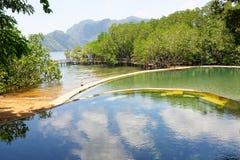 Maquinit温泉城, Busuanga海岛,菲律宾 库存图片