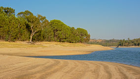 Maquis vegetation along the beach of Montargil lake, Portalegre, Portugal. Sunny landscape with maquis vegetation on the beach of `Baragem de  Montargil` lake Stock Photos