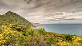 Maquis zakrywał linię brzegową w Corsica Fotografia Stock